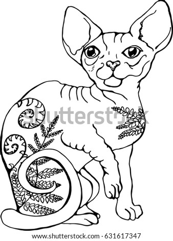 vector illustration of a cat