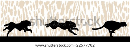 Vector illustration of a cheetah sprinting over an animal print background