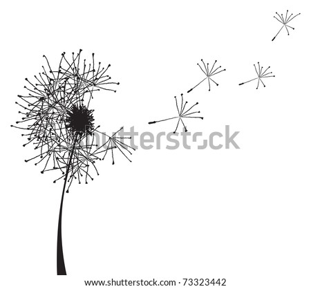 Vector illustration of a dandelion outline loosing its fuzzes