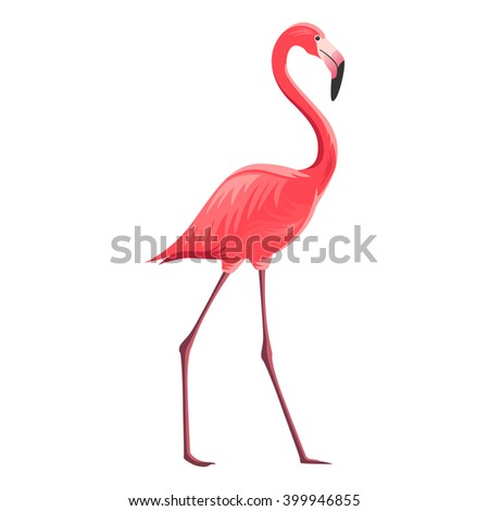 Vector Illustration of a Flamingo