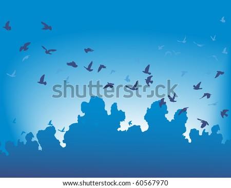 vector illustration of a flock