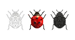 Vector illustration of a ladybug in low poly style. 3 isolated illustrations on a white background: linear, color, silhouette. Geometric ladybug made of triangles. Polygonal illustration.