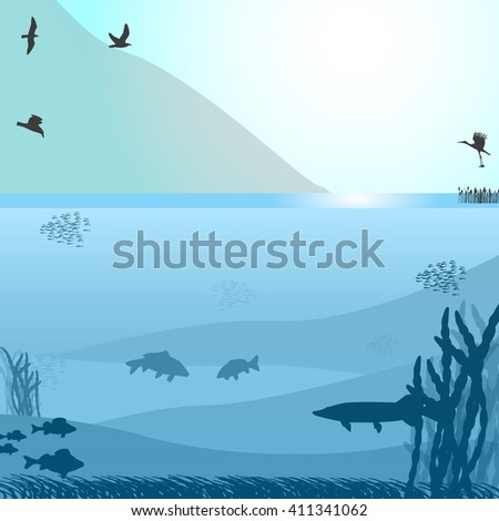 vector illustration of a lake