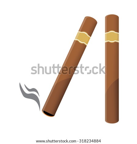 Vector illustration of a luxury Havana cigar with label. Cigar. An expensive cigar.