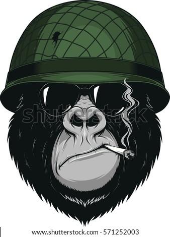 vector illustration of a monkey