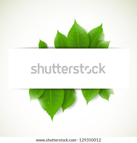 vector illustration of a nature