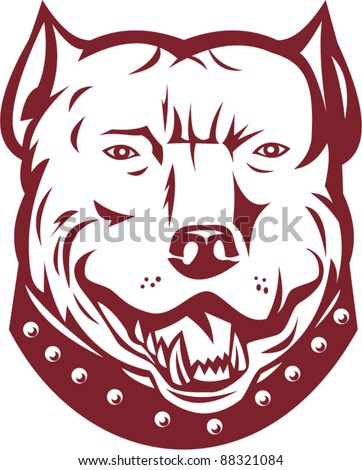 vector illustration of a pitbull pit bull terrier mongrel dog head facing front on isolated white background