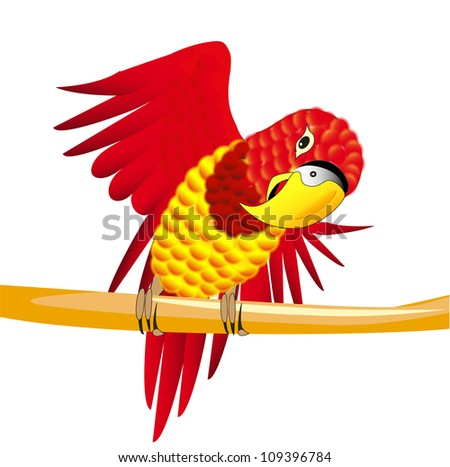 Vector illustration of a red parrot on the branch