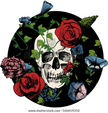 vector illustration of a skull