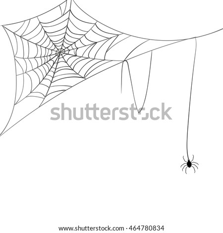 Vector Illustration of a Spiderweb and a Spider on a White Background #464780834