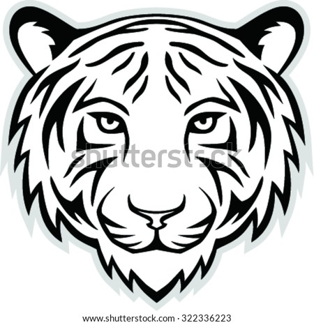 vector illustration of a tiger