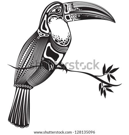 Toucan Stock Illustrations  8035 Toucan Stock