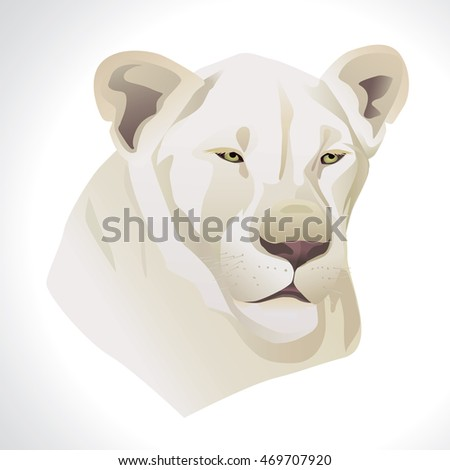 vector illustration of a white