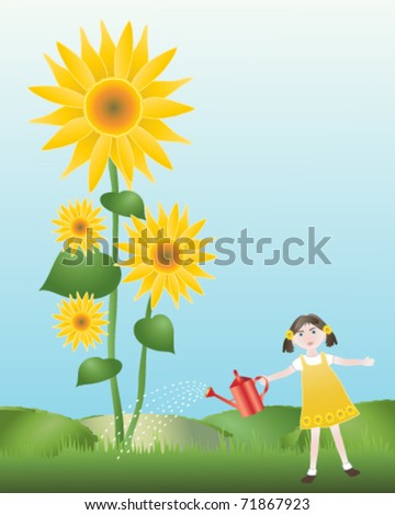 vector illustration of a young girl watering giant sunflowers in her garden in eps 10 format