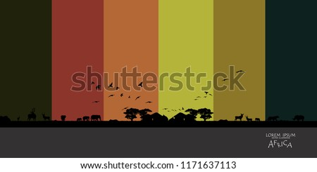 vector  Illustration of African Wildlife Background. Natural Background. African savanna landscape. safari card. vector.