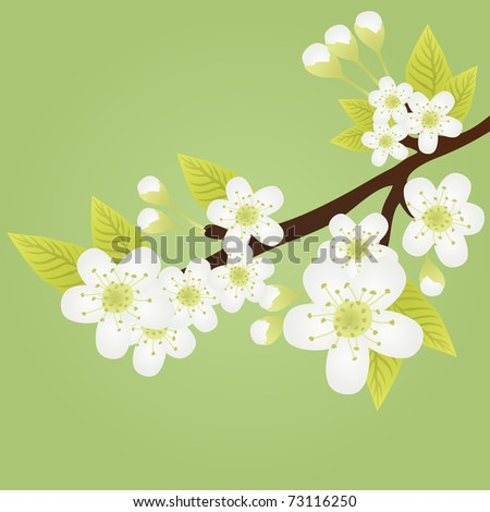 Vector illustration of apple-tree branch with flowers and butterflies fluttering over it