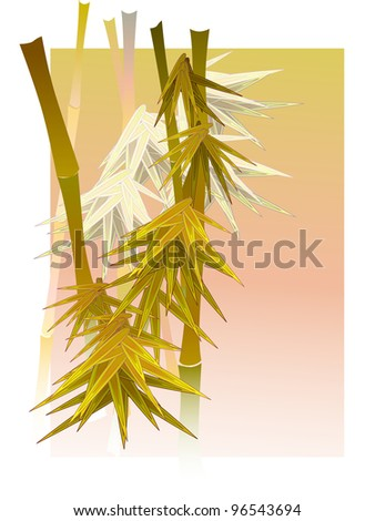 Vector illustration of asian bamboo in a fog in light of sun in white frame.