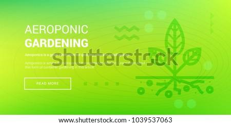 vector illustration of banner