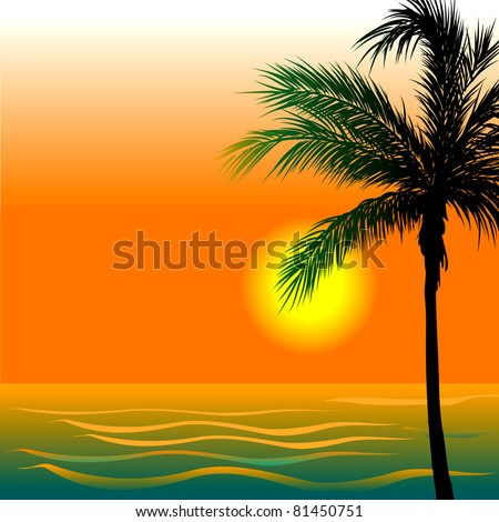 vector illustration of beach