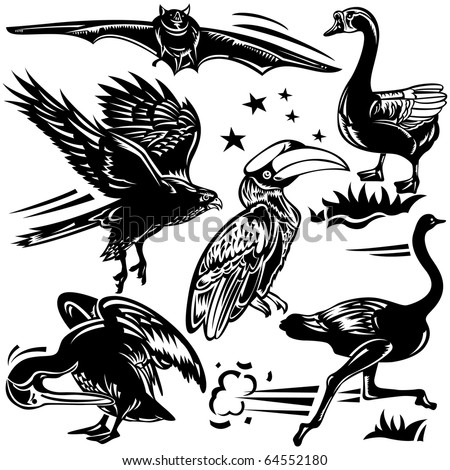 Vector illustration of Birds Design Set for variety design purposes.