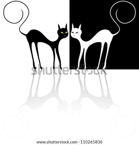 Vector illustration of black cat and white cat
