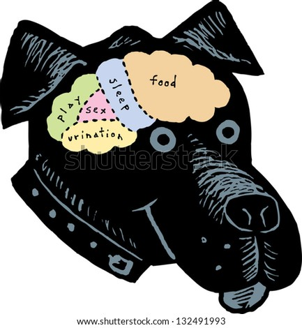 Vector illustration of brain map of a dog