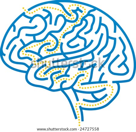 Vector illustration of brain maze with correct path. - stock vector
