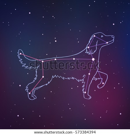 vector illustration of canis