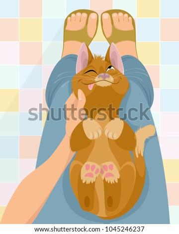 vector illustration of cat on