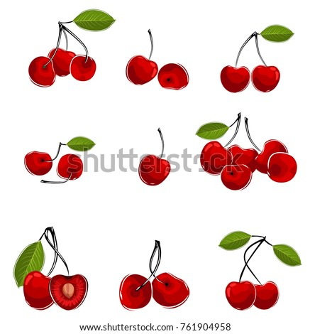 Vector illustration of cherry in different ways