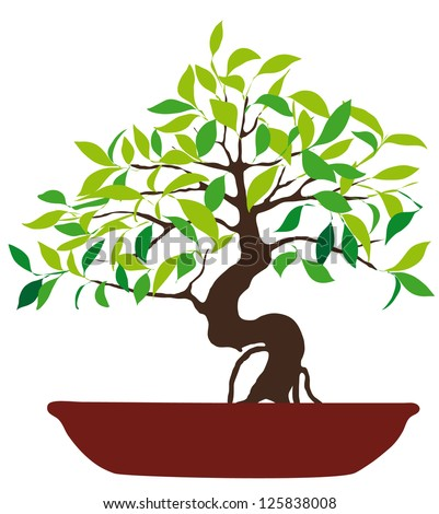 Vector Illustration of colorful bonsai tree isolated on white background