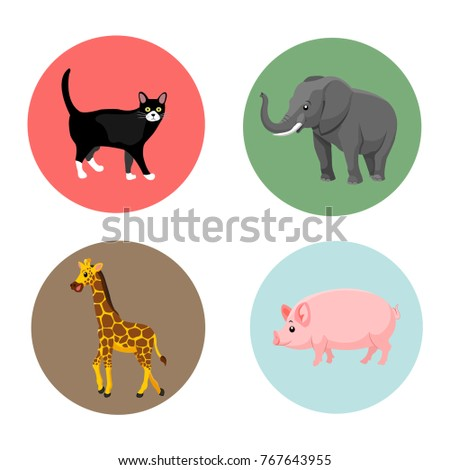 Vector illustration of cute animal set cat,elephant,giraffe,pig. animal set. cute zoo animal. animal cartoon on color background.