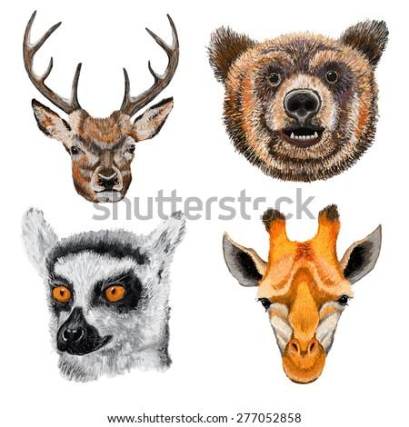 Vector illustration of cute animal set including deer, bear, giraffe and lemur.