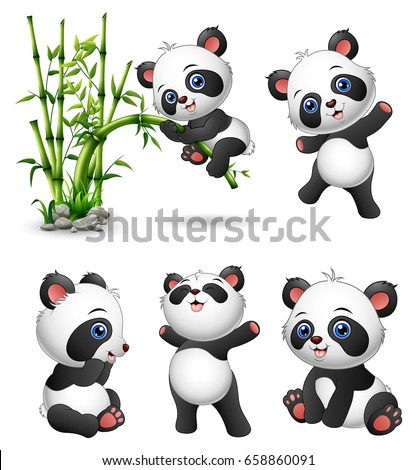 Vector illustration of Cute baby pandas collection