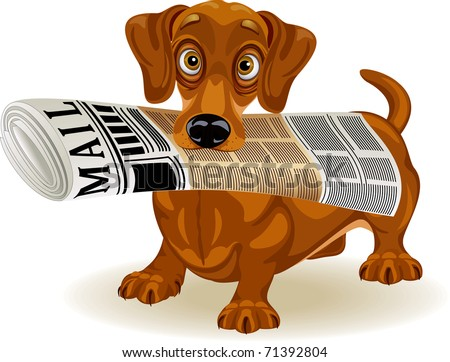 vector illustration of dachshund holding the morning newspaper in his mouth - stock vector