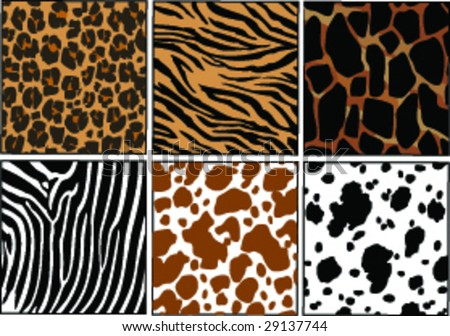 Vector Illustration of different animals skins