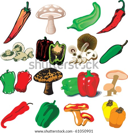 Vector Illustration of 16 different Mushrooms and Peppers