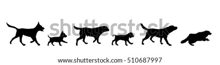 vector illustration of dog on a