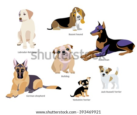 vector illustration of dogs
