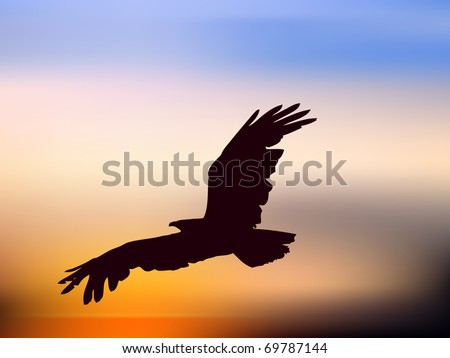 vector illustration of eagle in