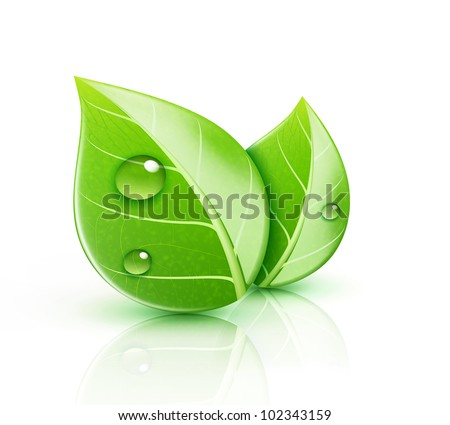vector illustration of ecology