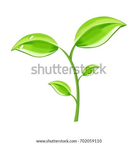 Vector illustration of ecology concept icon with glossy green leaves. Green leaf ecology design environment element.