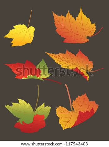 Vector illustration of Falling Autumn Leaves