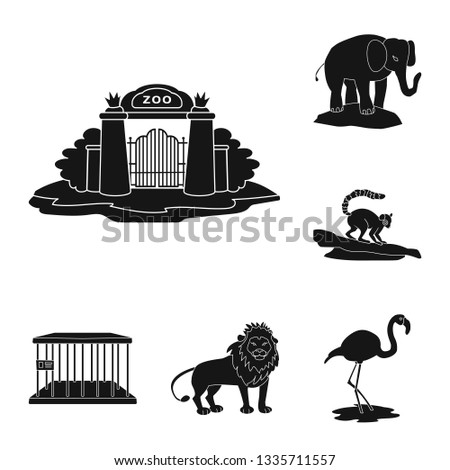 Vector illustration of fauna and entertainment symbol. Collection of fauna and park stock symbol for web.