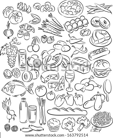 vector illustration of food