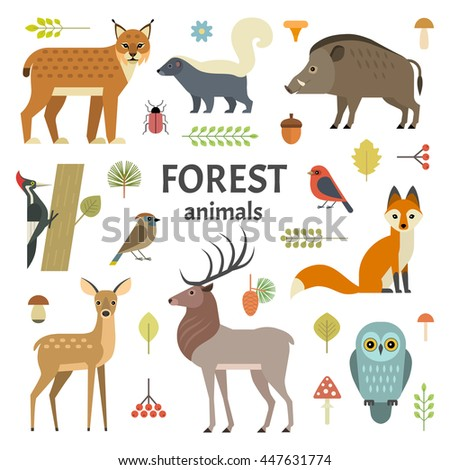 vector illustration of forest