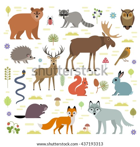 Vector illustration of forest animals: moose, deer, bear, hedgehog, rabbit, squirrel, beaver, wolf, fox, raccoon, owl, grass snake, isolated on transparent background.