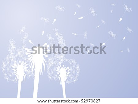 Vector illustration of fragile dandelions on windy day