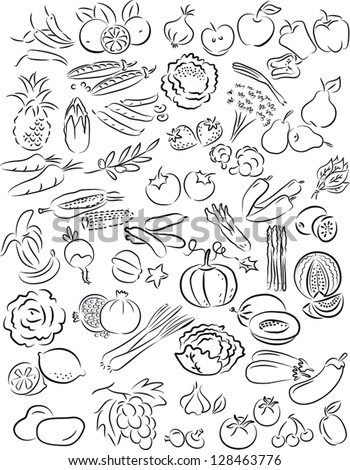 vector illustration of fruits and vegetables set in line art mode