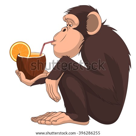 Vector illustration of funny chimpanzee sitting and drinking fruit cocktail